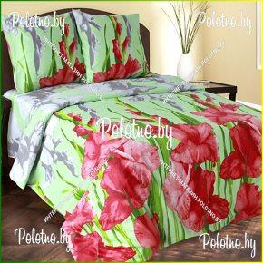 Купите комплект «Гладиолусы» бязь полуторный 50х70 — бязевое постельное белье